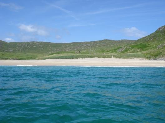 beachming